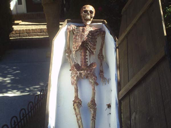 Close-up of Halloween Corpse in Coffin