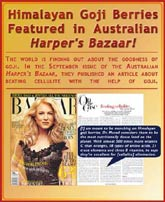 Himalayan Goji Berries Featured in Harper's Bazaar